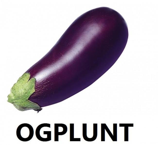 Ogplunt